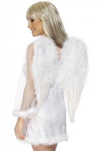 Anjelske krídla SM